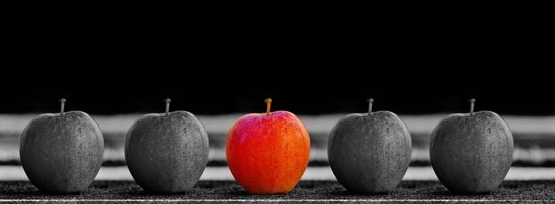 سئو و توضیحات اختصاصی محصول