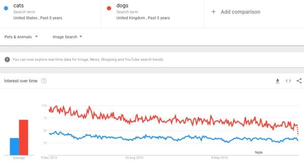Google Trends و سئو