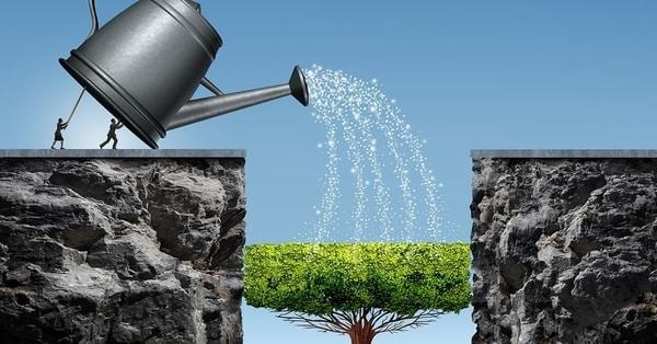 عدم ارائه استراتژی بلند مدت در سئو ارزان