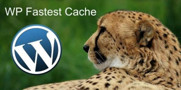 افزونه کش WP Fastest Cache Premium