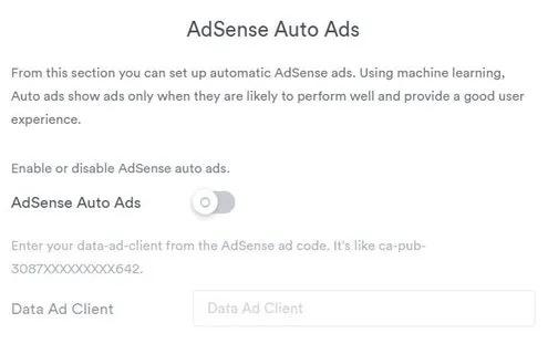 Enter the code AdSense